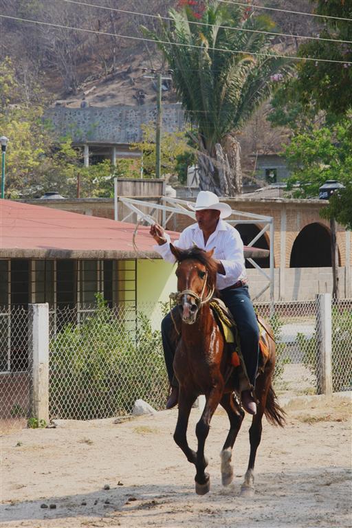 Real Mexican cowboys. Photo: Rosary Walsh