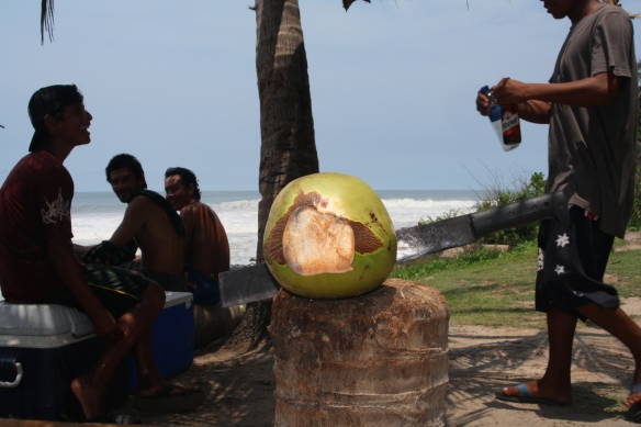 Post surf fresh young coconut...perfect!